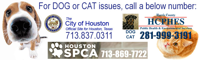 Harris County Animal Control Services
